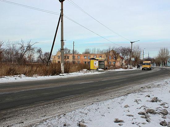 Челябинская область роза