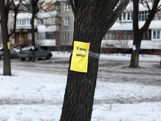 Год экологии в Челябинске начался с вырубки деревьев
