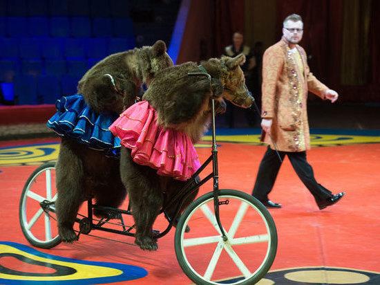 где стоят проститутки за цирком