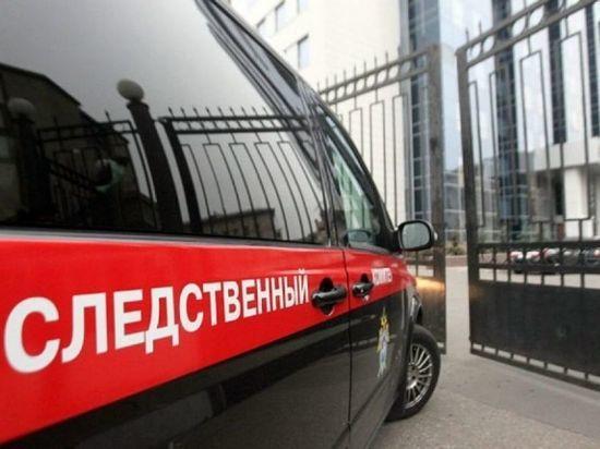 ВЧелябинске задержана 75-летняя теща депутата Государственной думы Вадима Белоусова