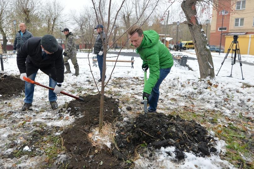 ВЧелябинске заканчивается компенсационная высадка деревьев
