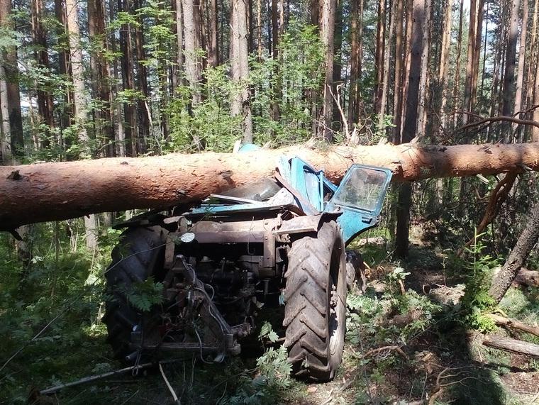 НаЮжном Урале дерево убило тракториста